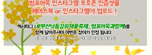 유채꽃축제이벤트 사본